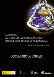 20130919 Documento de Sintesis
