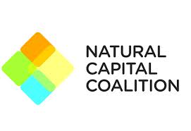 2015 10 14 Natural Capital Coalition logo